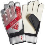 Goalkeeper gloves adidas Predator TRN M 11