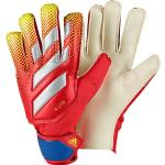 Goalkeeper gloves adidas X Lite 4